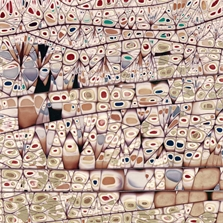 Pierre Cordier (1933 -), Chimigramme 1/5/70 III (détail), 59 x 43 cm, 1970.